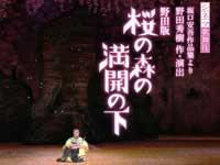 シネマ歌舞伎『野田版 桜の森の満開の下』予告篇